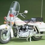 Motorsikletler (2)